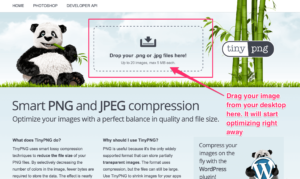 tinypng-optimized-web-images